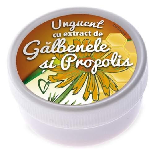 Unguent balsamic cu extract de galbenele si propolis, 20 g, Viva Pharma