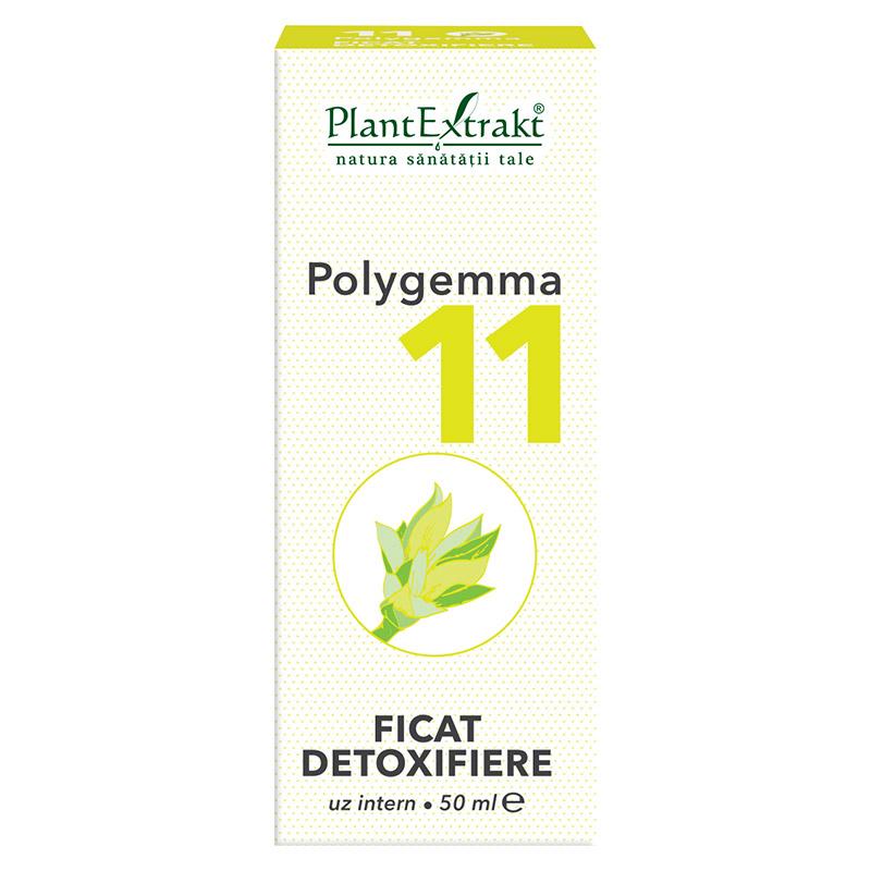 polygemma pentru ficat